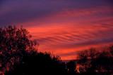Sunrise on the Last Day of Autumn 2007.jpg