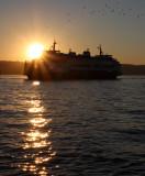 sunset on the Mukilteo ferry