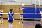 youth volleyball *all galleries*