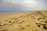 Long beach...