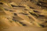 Sand waves...