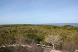 Emerson Point Preserve