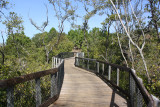 Observation Tower Trail