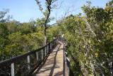 North Restoration Trail