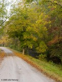 Fall in Cheatham County