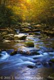 Great Smoky Mountains Fall 2010