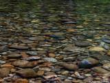 Little River Bottom