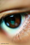 Eyeful