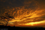 Sunrise Over Davao (June 27, 2010)
