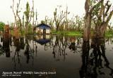 Floating house in Agusan Marsh