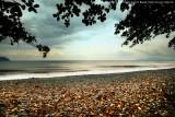 Mayo Beach Resort