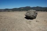 rocks and vegetation (1)
