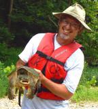 always liked turtles