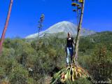 posing below the Volcan de Colima