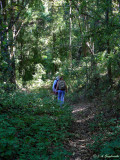on meager trail towards the Volcan de Colima