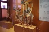 Wayung Kulit Inside National Museum of Jakarta.jpg