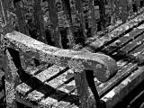 Lichen's rest