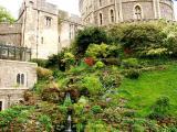 Windsor Gardens 3