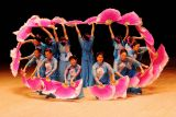 Pink Fans