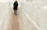 Ice Maze 8086.jpg