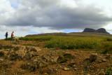 Hugað að ársgömlum trjáplöntum