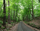 Dunham Hill Road