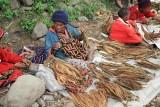 Tobacco Leaves Vendors