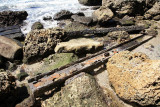 Japanese Dock Remains