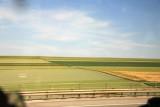 Rhineland Landscape