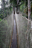 Treetop Canopy Walkway