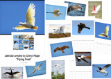 Flying Free birds calendar created on Redbubble by Cheryl Ridge