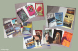 Photos used in range of greeting cards and gift wrap (various)