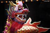 Chinese New Year - Dragons