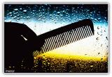 comb and water droplets