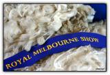 prized wool