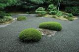 Le jardin des pierres (pas sec, avec des verdures)
