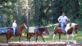 Indian Heaven Wilderness partnership work -  2009