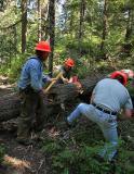 Packwood Lake Trail, 2006