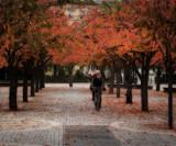 A fall ride...