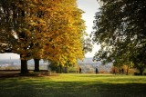 Fall afternoon in the park...