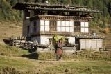 Bhutan 410 Nik.jpg