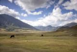 Bhutan 385 Nik.jpg