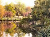 Parco Sempione Spring