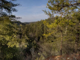Swift Camp Creek Overlook