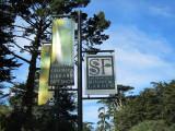 Golden Gate Park Feb 2011