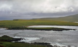 Shetland Islands - Noss