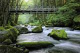 Bridge Over Herman Creek