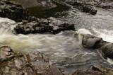 Lucia Falls #3