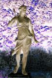 Inverted Diana