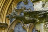Griffin Gargoyle on Tyntesfield Chapel